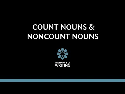 Introduction To Count Nouns And Noncount Nouns