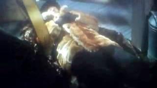 Бой с Тенью 2 в СССР