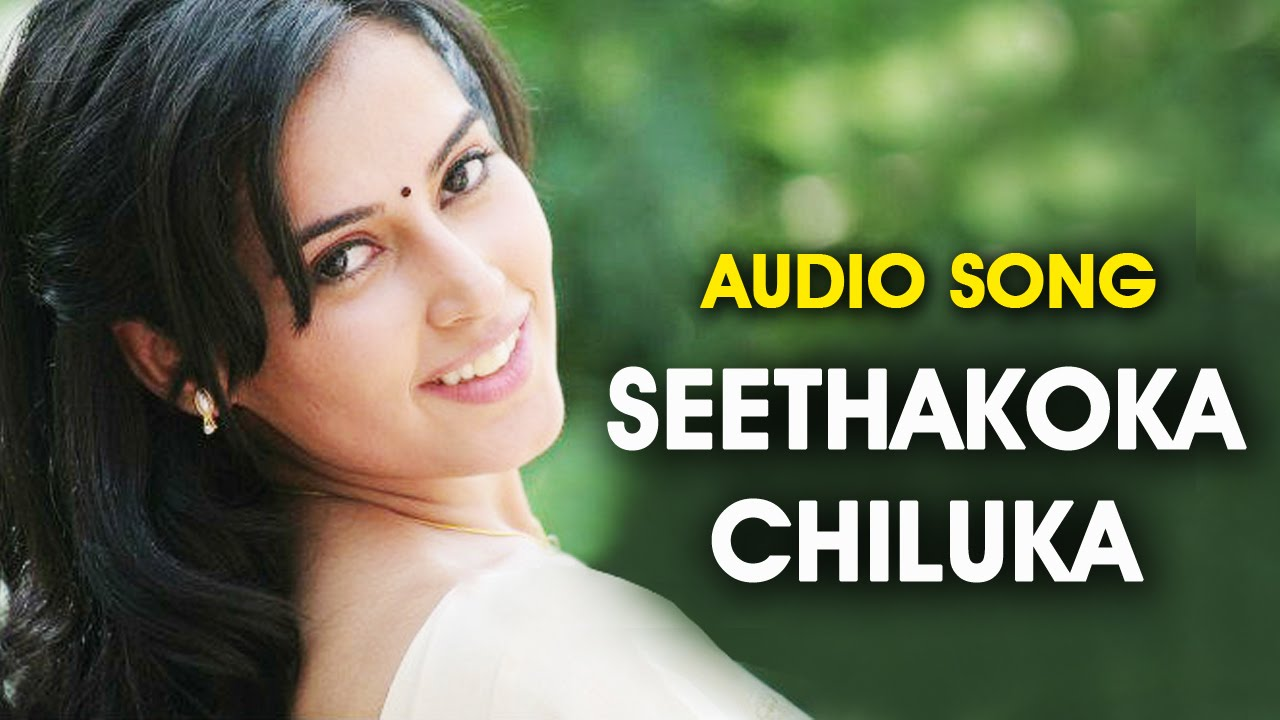 Seethakoka Chiluka Movie Songs - Kannulu Kannulu Song