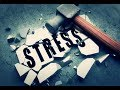 Stress and violence