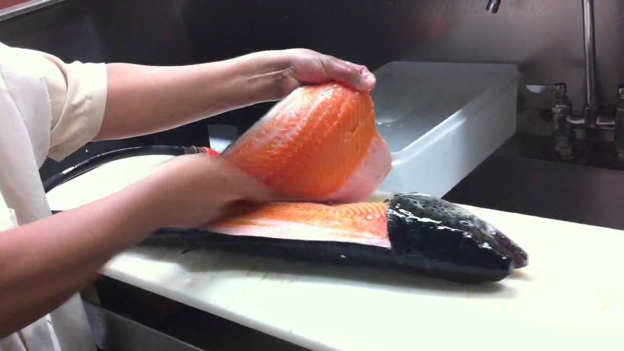 Cosmos seafood filleting fresh fish salmon youtube for How to make fish fillet