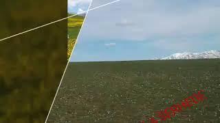 Erzurum Tekman sussuz koyu(3)