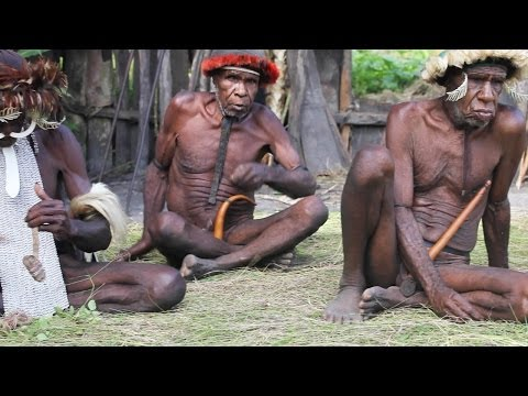 Papua - a cultural and botanical expedition in New Guinea