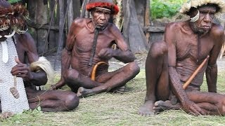 Video Papua - a cultural and botanical expedition in New Guinea download MP3, 3GP, MP4, WEBM, AVI, FLV Agustus 2018
