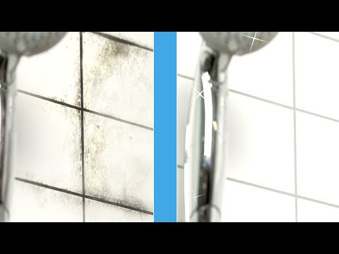 Mold cleaner: This spray removes fungus from the wall