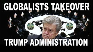 Steve Bannon Out What You Really Need To Know