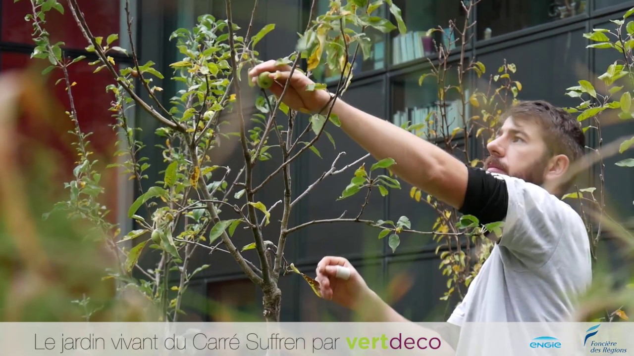 Jardin vivant du carre suffren par vertdeco youtube for Jardin vivant