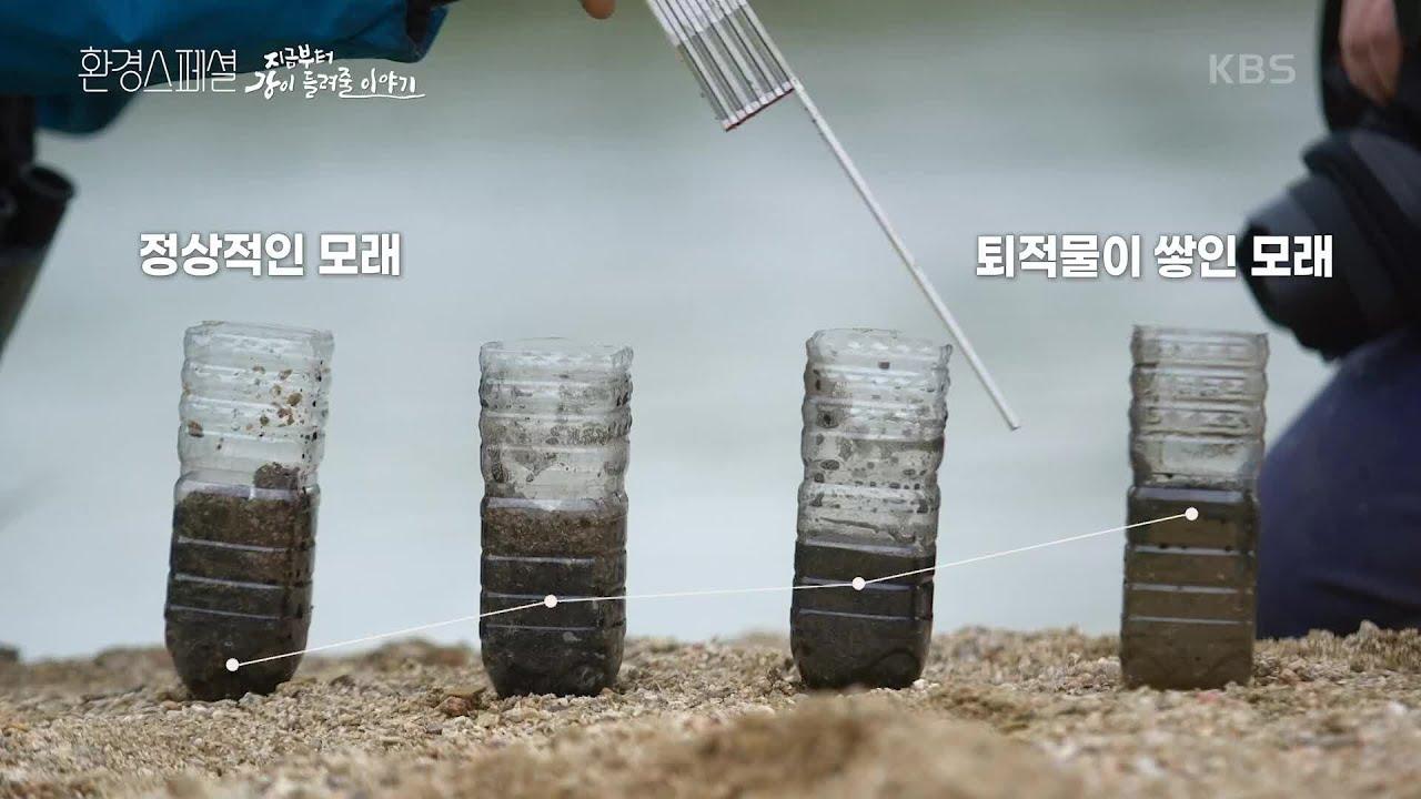 뻘로 뒤덮인 모래, 무엇을 의미할까? [UHD 환경스페셜] | KBS 210617 방송