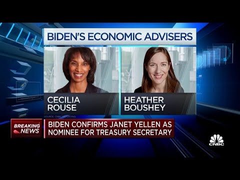 Why Janet Yellen as Treasury Secretary is the perfect choice at the ...