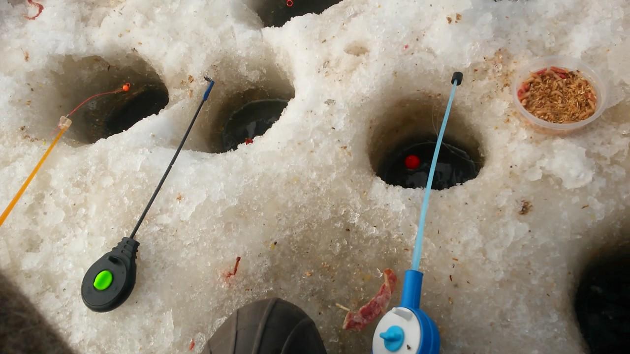 Снасти ловля карася зимой