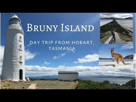 Tasmania VLog: Day Trip To Bruny Island (The Neck, Cape Bruny Lighthouse)