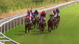 Vidéo de la course PMU PRIX DE L'ILET CHEVALIER