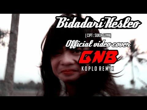 GNB - bidadari kesleo / Sukir Genk  ( official video cover )