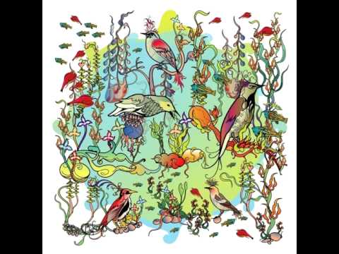 John Zorn - Little Bittern