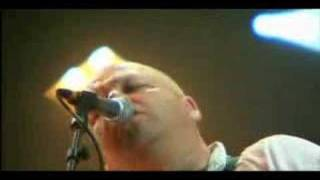 Pixies - Wave Of Mutilation Live