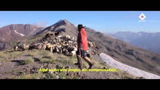 Travel to San Fabian - The New Destination Travel Video