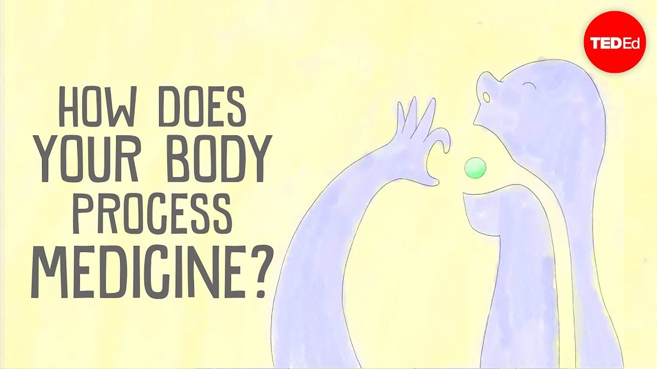 How does your body process medicine?