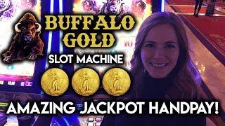 AMAZING ✦ Buffalo Gold ✦ HANDPAY! ✦ JACKPOT WIN!!!