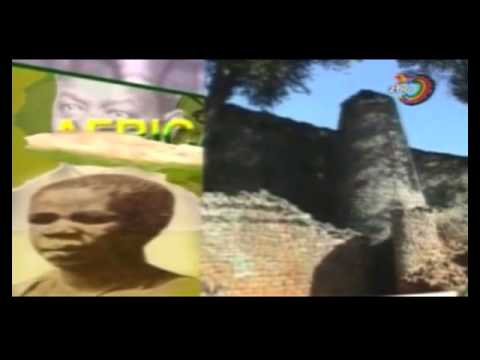 Zimbabwe Broadcast Coporation (TV) Airs Hate Inciting Propaganda