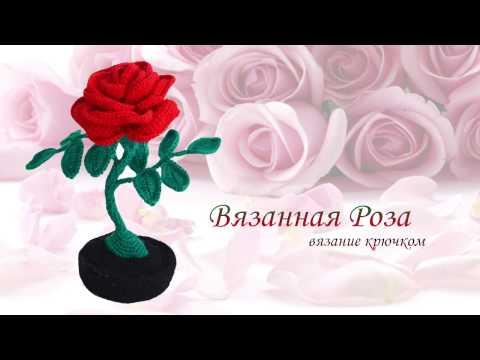 роза крючком вязанные цветы этап 1 Youtube