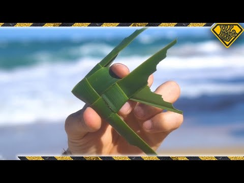 """How To Make a """"Fish On A Stick"""" Toy (Cool Palm Leaf Craft)"""