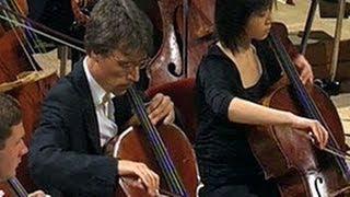 Ein Orchester - Die Streicher (1/3)