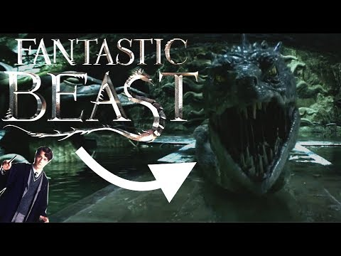Harry Potter Theory: How Voldemort will be in Fantastic Beasts!