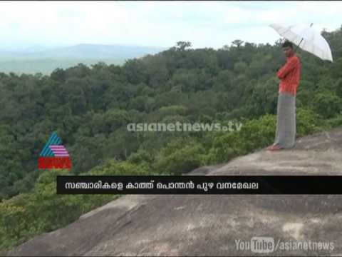 Ponthanpuzha Forests welcome visitors