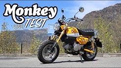 2020 Honda Monkey | das geilste kleinste Bike?!?