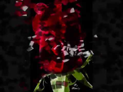 Zindagie Lootadu - Rmx - Dj Temptation