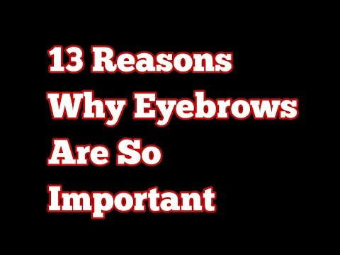 Eyebrows!! Why Are They So Important?!