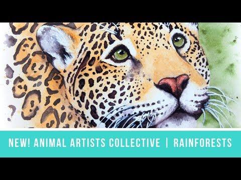 Animal Artists Collective: Tropical Rainforests | Jaguar Portrait