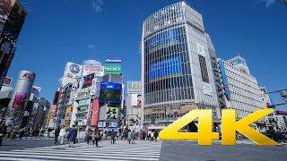 Shibuya Crossing long take - Tokyo - 渋谷 -4K Ultra HD