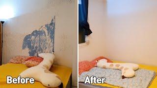 고양이 땜시 벽지 도배했습니다. / Set up a r…