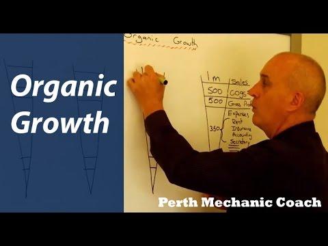 Why Organic Growth is Soooo Slow - Perth Mechanic Coach