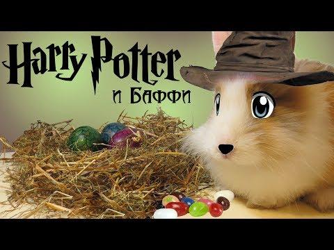 Баффи в Хогвартсе / Как сделать бобы Гарри Поттера / Развлечение для детей и Челлендж с едой