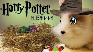 Баффи в Хогвартсе / Как сделать бобы Гарри Поттера и Челлендж с едой