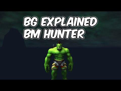 BG Explained - Beast Mastery Hunter PvP - WoW BFA 8.2