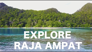 TRAVEL VLOG #02 : SNORKELING WITH SHARKS - EXPLORE RAJA AMPAT PART 1