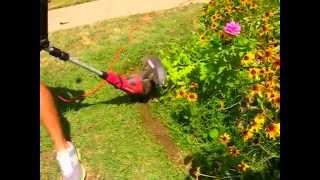 как обработать край цветника