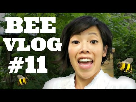 Bee Vlog #11 - Summer Hive Check