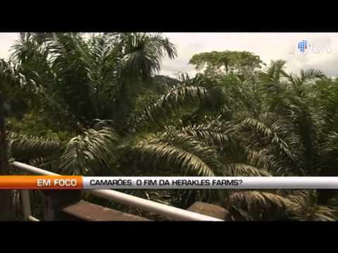 Camarões: O fim da Herakles Farms ?