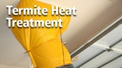 Termite Heat Treatment