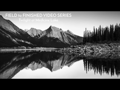 From Field to Finished: Black and White Nature Photography Tutorial