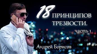 Уроки трезвости. 18 принципов в лечении наркомании и алкоголизма. Андрей Борисов.