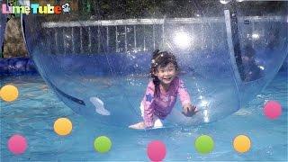 물위를 걷다!! 대형 풍선 워터워크 놀이기구를 타요! 서울랜드 3탄 LimeTube & Toy 라임튜브