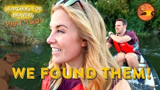 We Found Them! | Searching for Beavers (Part 2) | Maddie Moate