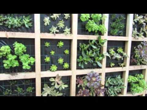 Easy Vertical Succulent Garden Design Ideas