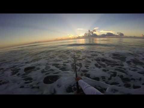 Surf Fishing Fort Pierce Plus Free Online Surf Fishing Course