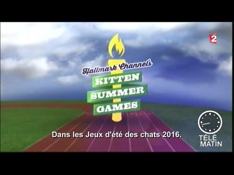 TV Ailleurs - Kitten Summer Games